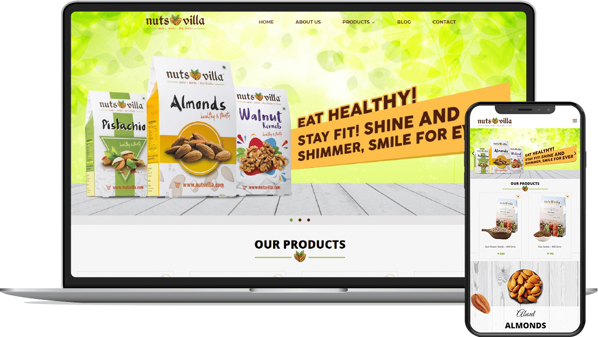 Ecommerce website development for Nutsvilla